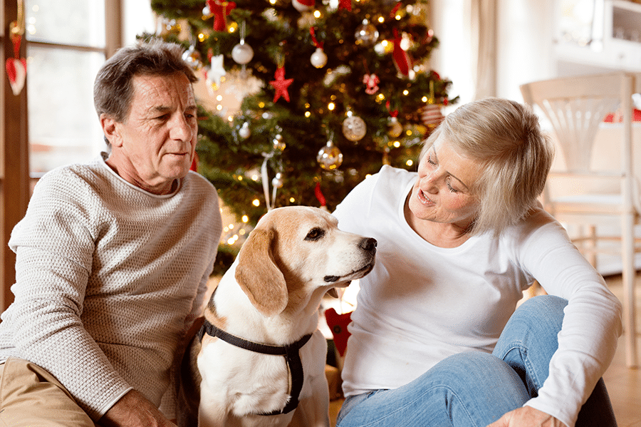 Tips to Keep Your Pets Safe During the Holidays