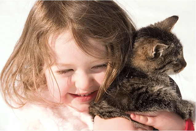 Kids and Pets: A guide to safe interactions