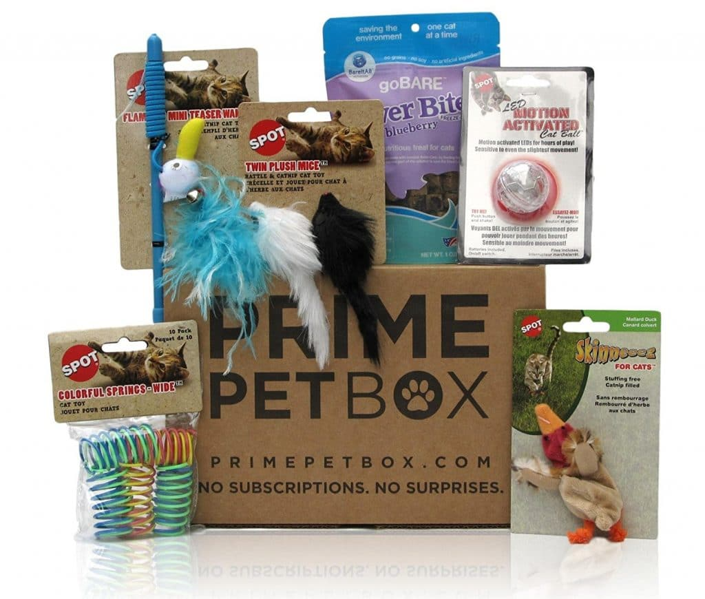 Amazon - Prime Pet Box