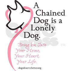 have a heart for chained dogs